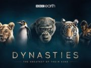 BBC natural history series, Dynaties